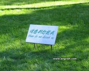 Chinglish-33