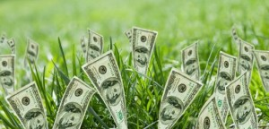 Green Economy Green Dollars